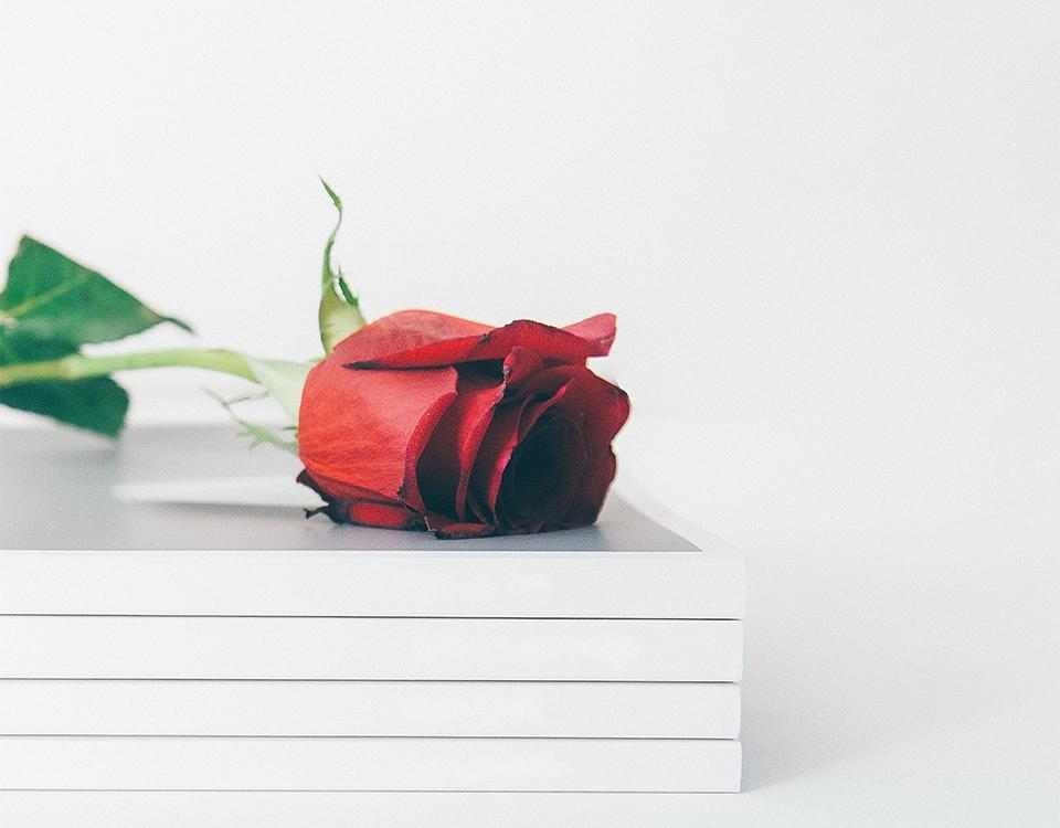 Llibres de cuina i hoteleria amb segell EUHT StPOL Alumni